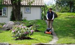 Rzadki trawnik, trawa nie chce rosnąć, chwasty na trawniku - problemy z trawnikiem. Co zrobić, gdy trawa nie rośnie dobrze?