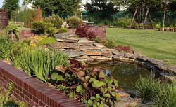 Pomysł na skalniak. Jak zrobić i dbać o przydomowy ogród skalny? [WIDEO]