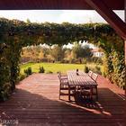 Pergole ogrodowe - mała architektura, która tworzy kameralny nastrój